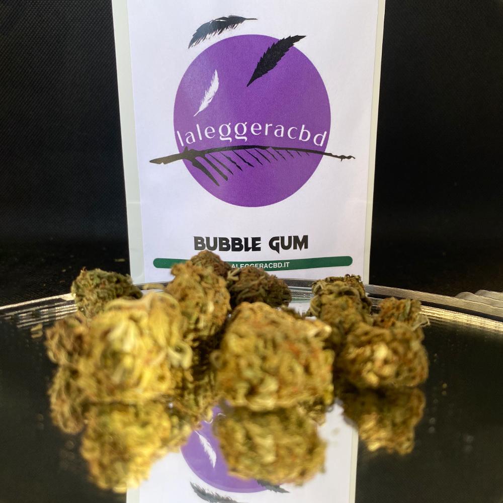 bubble gum cannabis light