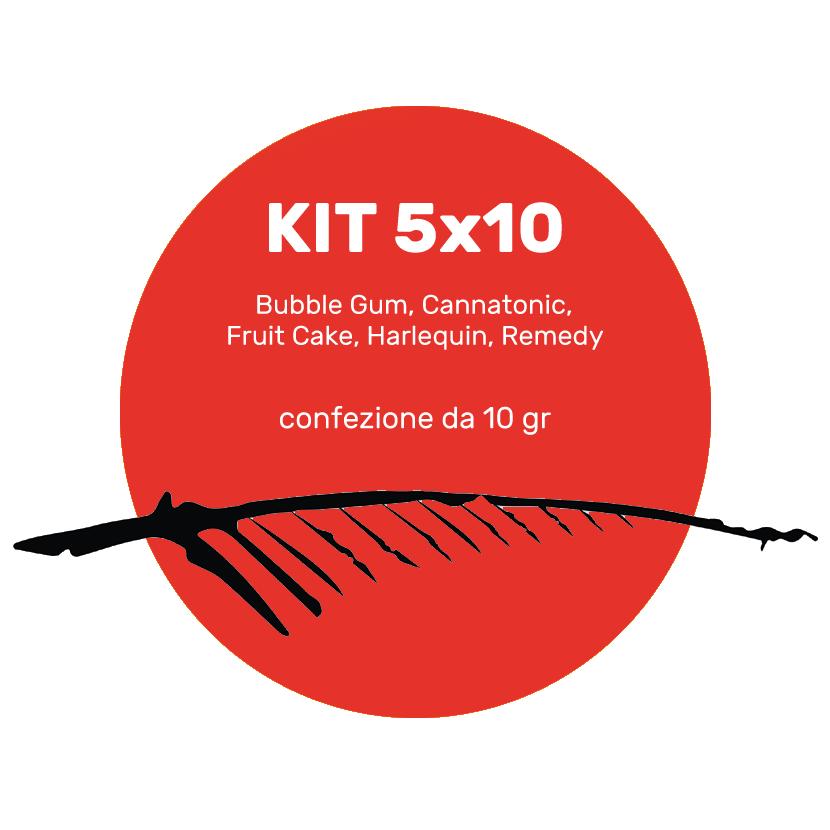 kit 5x10 nuove varietà tot 50g, cannabis