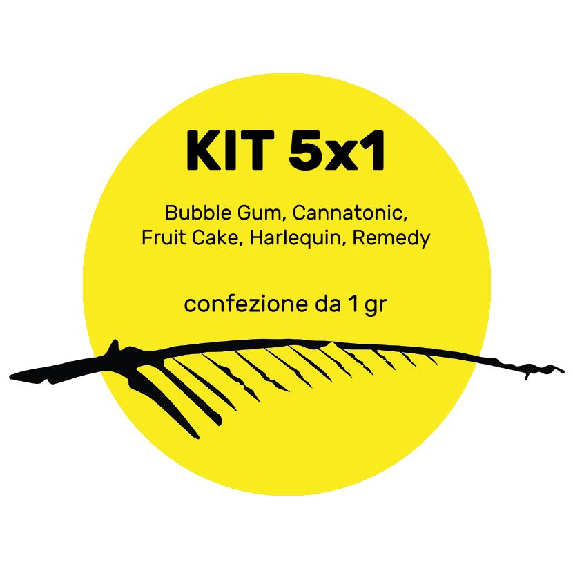 kit 5x1 nuove varietà 5g, cannabis