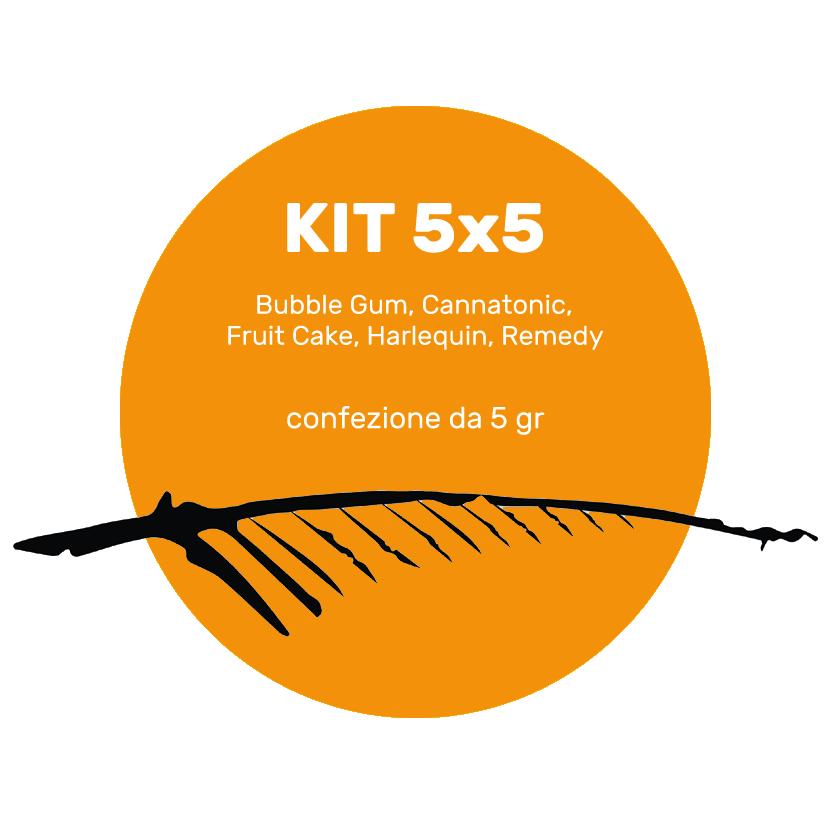 kit 5x5 nuove varieta tot 5g, cannabis